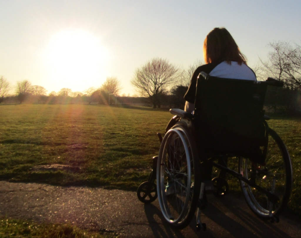 Photo of Ami in her wheelchair facing the firethorn of the sun, with her back to the camera
