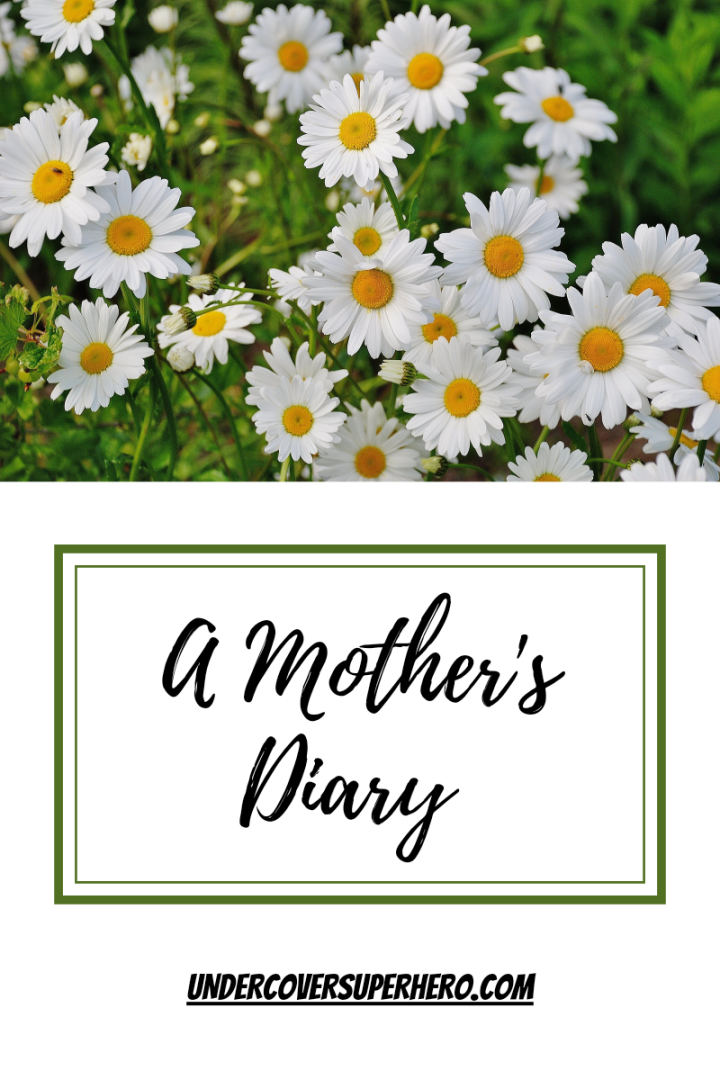A Mother's Diary – Entry 02